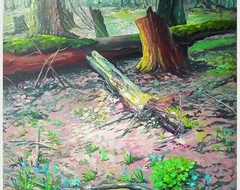 Весенний лес/Spring forest
