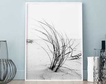 Grass poster, Grass print, Wall art, Art Print, Scandinavian print, Scandinavian poster