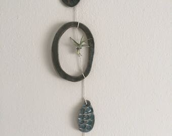 Wall Hanging with Airplant