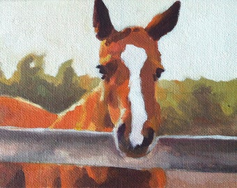 Horse 5x7 Original Oil Painting