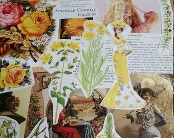 OOAK Yellow Victorian Botanical Paper Ephemera, Collage pack, 50+ pieces paper pack, Paper ephemera lot, junk journal pack, theme paper lot