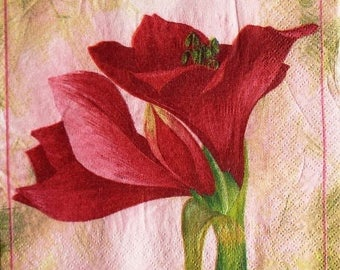 TOWEL in beautiful paper #F009 Amaryllis flower
