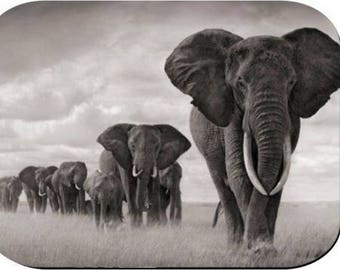 Mouse Pad - Elephants