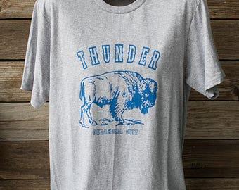 Thunder Bison