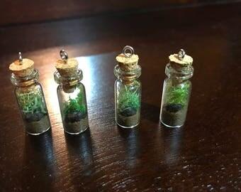 Miniature Terrarium Necklace