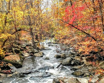A beautifull color Autumn landscape photo of Little Rocky Run in Centreville, Virginia