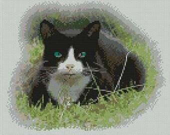 "Black & White Cat Counted Cross Stitch Kit 10"" x 8.5"""