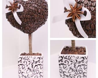 Tree of coffee