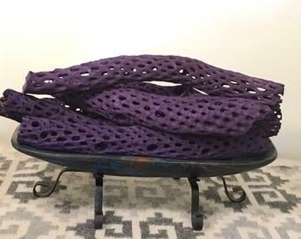 Purple Cholla Cactus