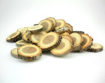 "50 2.5"" - 3"" elm tree slices- wooden craft discs/tree cookies/wood blanks- unsanded"