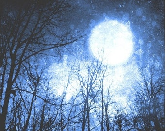 50% OFF SALE Blue Night Sky Photo, Surreal, Moon Art Print, Tree Photo, Forest, Black, Cosmic, Navy Blue, 8x8 inch Fine Art Print, Into the