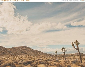 SALE desert photography, Joshua Tree National Park photo, southwestern, landscape print, desert poster, boys room wall art, California decor