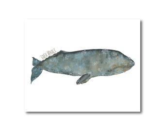 Gray Whale Ocean Watercolor Print Nursery Nautical Coastal Giclee Fine Art