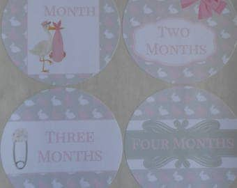 Pink and Gray Rabbits-Baby Girl-Monthly Bodysuit Stickers-set of 13