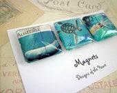 Square Glass Magnet set - Australian Stamp Collection - Australian Sea Life