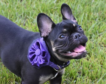 Dog Collar Purple White Polka Dot and Satin Flower Bow