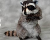 2014 TOBY Industry Choice Winner  Life Size Baby Startled Raccoon OOAK Needle felted by Bear Artist Stevi T.