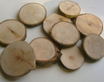 15  Tree Branch Slices  2.5 inch