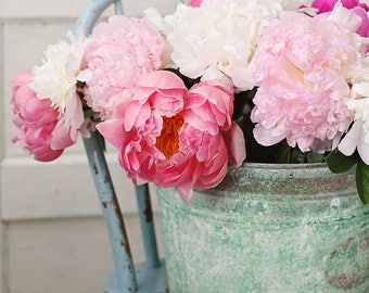 Peony photograph,pink peonies,shabby chic, fine art print, floral photography, pink, green,cottage decor
