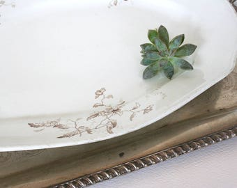 Large antique semi porcelain serving plate by S. F. and J. England, brown transferware, floral plate, scalopped plate, Halcyon pattern