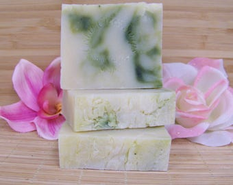 Citrus Herb Soap Citrus Herbal Olive Oil Cold Processed Soap Natural Herbal Soap
