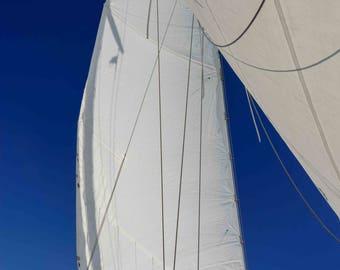 Sailing Photographs, White Sails, Nautical Art, Schooner Madeleine, Newport RI, Sailboat Print, Blue White, Coastal Wall Art, Large Wall Art