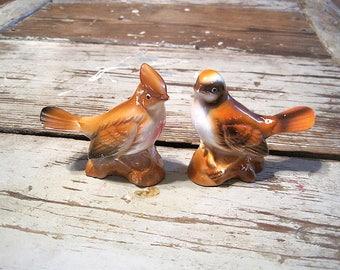 Vintage Songbird Salt and Pepper Shakers