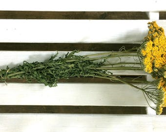 DRIED FLOWERS bunch Lg yellow/gold YARROW Flowers Natural Fragrant Flower Bouquet Wedding Flowers Country Shabby Chic Shower Floral Supplies