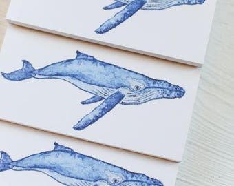 Illustrated Notepad Humback Whale Nautical Stationery