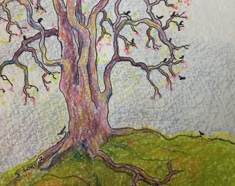 Starlings in tree signed original colored pencil by Chris Lorenz