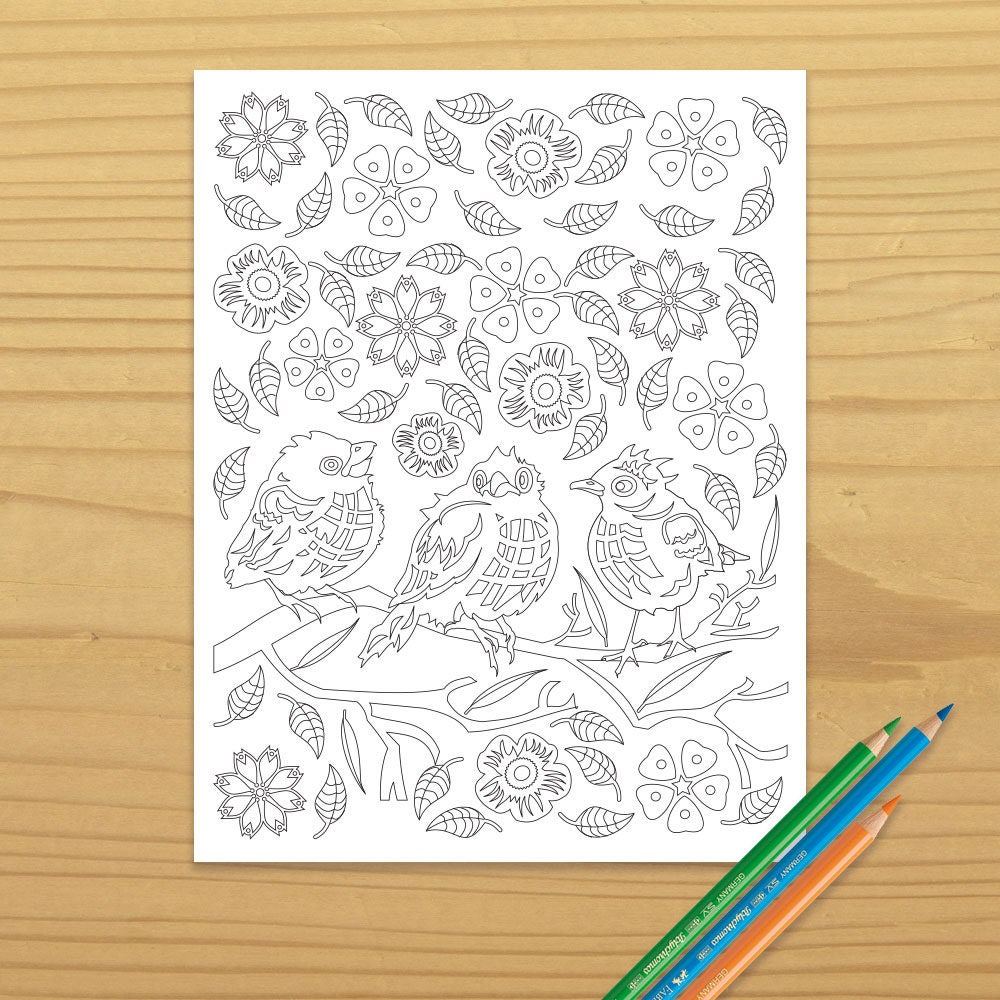 Bird Coloring Page Robin Songbird
