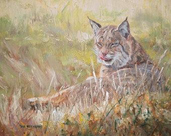 Bobcat Study (original oil on canvas)