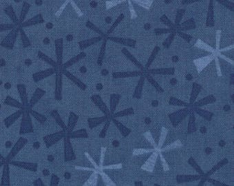 30505-40 Navy, Ten Little Things by Jenn Ski for Moda