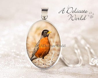 Silver Robin Necklace - Sterling Silver Bird Jewelry, Genuine Silver Bird Necklace, American Robin Bird Pendant, Robin Jewelry, Bird Photo