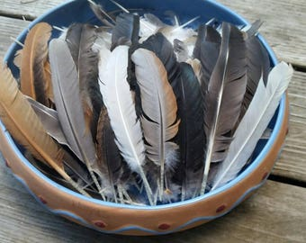 Random assortment natural colored feathers - sold by the 1/2 (0.5) ounce