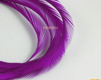 50 Pieces Purple Feather 10-16cm (YM439)