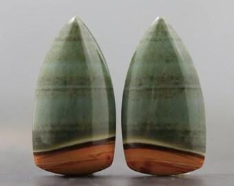 Brazilian Jasper Fine Earring Setting Par Natural (CA8740)