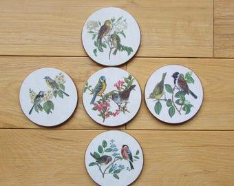 Vntg Bird Collection Coasters Lady Clare England