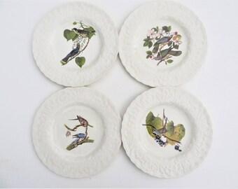 Mid Century Alfred Meakin Birds of America National Audubon Society Dinner Plates - Set of 4 Birds of America Dinner Plates