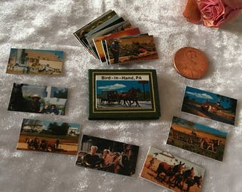 Vintage Miniature Photo Album and Photos. Bird-in-Hand, PA Scrapbook With Local Photographs. Amish Photos in Miniature.
