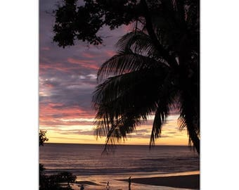 Coastal Wall Art 'Coastal Sunset Skies' by Meirav Levy - Beach Sunset Decor Tropical Palm Trees Decor on Metal or Plexiglass