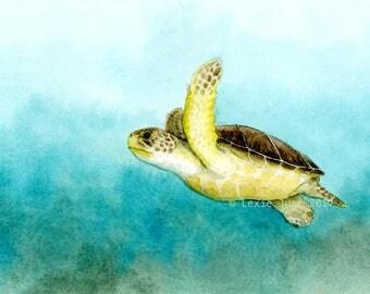 Green sea turtle glicee print