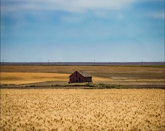 Isolation - A Red Barn in the middle of a Wheat Field