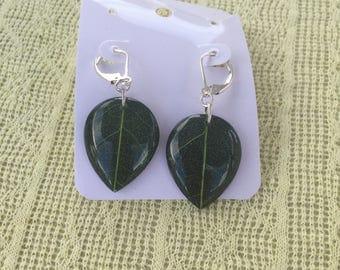 Leaf Sterling Silver Earrings