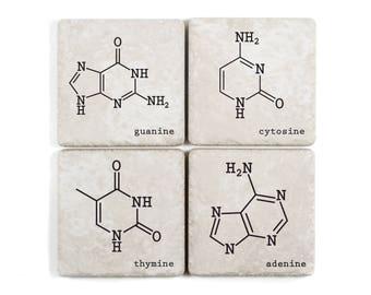 DNA Nitrogenous Bases, Tumbled Ceramic Coasters, adenine, thymine, cytosine, guanine