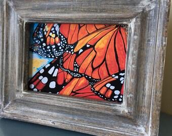 Monarch Butterfly Print - Butterfly Print - Monarch Art Print - Monarch Butterfly Wall Art - Butterfly Art