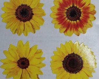 StickyPix Stickers 8 Images Per Sheet Mixed Mini Sunflowers Scrapbooking