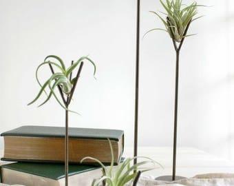 Steel Brown Distressed Air Plant Stands - tillandsia,  stand, terrarium, modern, zen, office gift, desk accessory, grown, wedding decor
