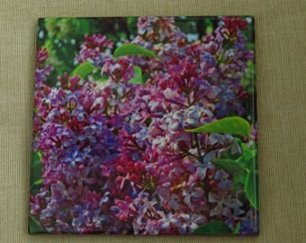 "4""x4"" Ceramic Coaster Purple Lilac Blooms"