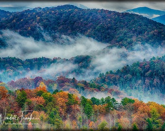 Rainy Autumn Day in the Smokies E254. Autumn Color, Mountains, Rain, Fog, Leaves, Natural Beauty, Smoky Mountains, Smokies, Foothills